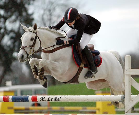 chevaux celebres