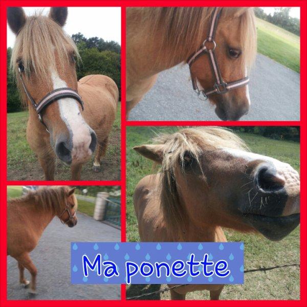 Ma Ponette..