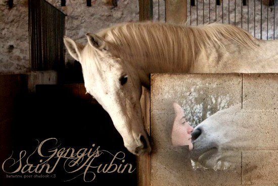 Gengis Saint Aubin ♥