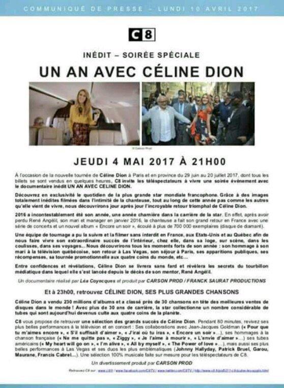 Un an avec Celine Dion