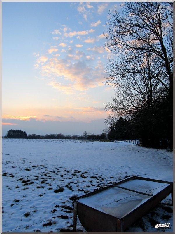13/03/13 : summum de la froidure !