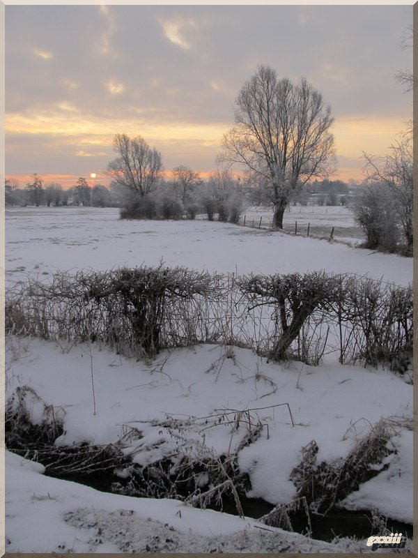 15/03/13 : second pic de froid