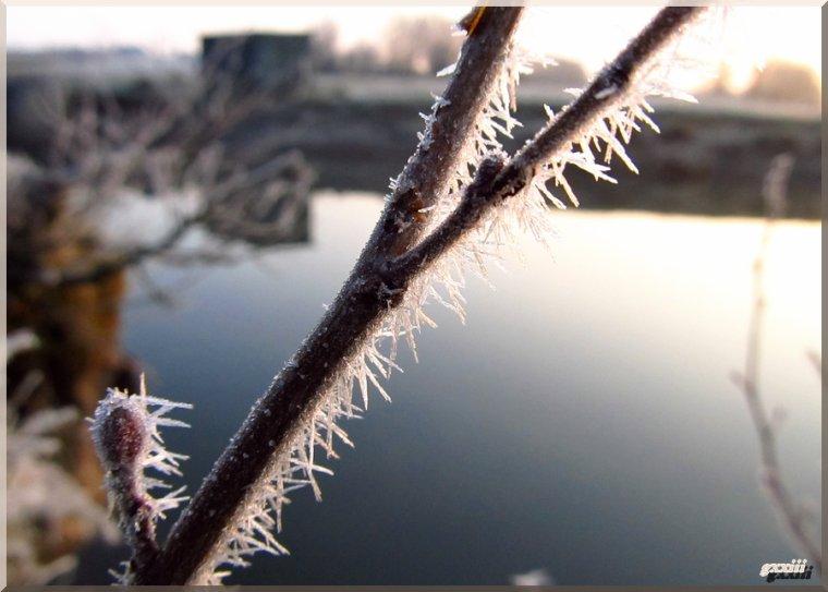 7 avril : l'hiver n'abdique pas !