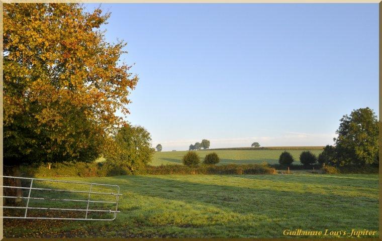 Petite balade d'automne