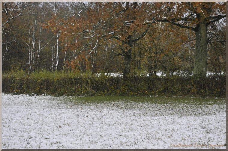 Neige d'automne le 21 novembre 2013