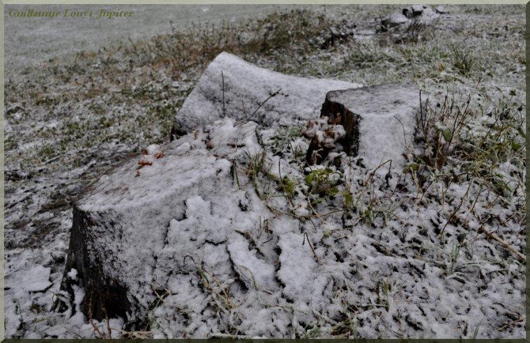 Un zeste de neige