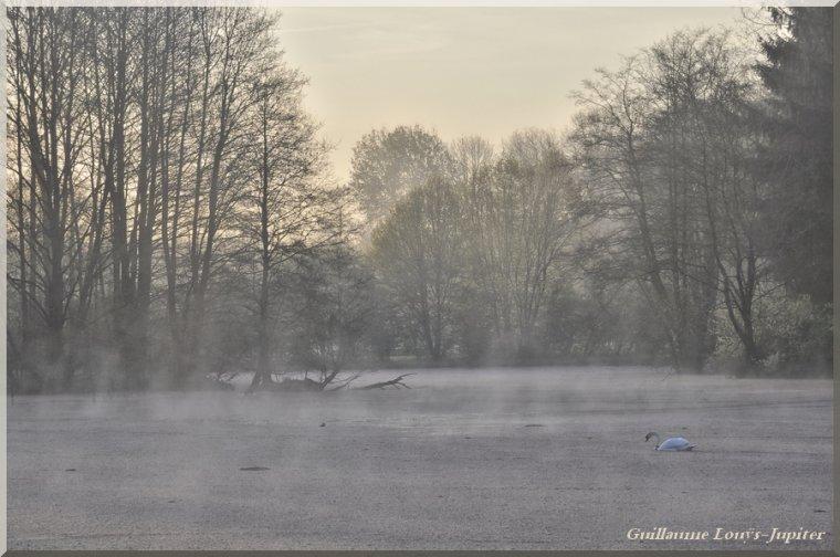 Les temps de la brume