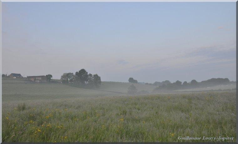Belges brumes estivales