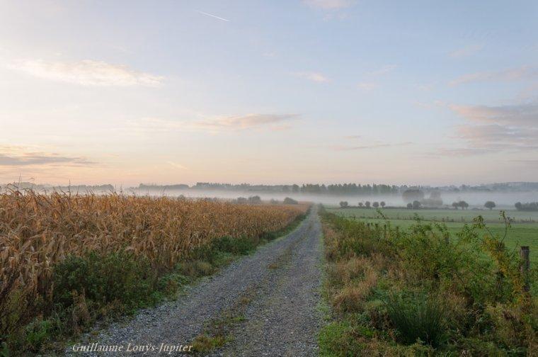 Ach, l'automne et ses brumeuses lubies...