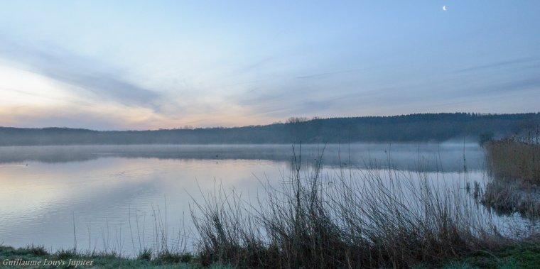 Sur l'étang (du Hayon) flotte la brume jolie