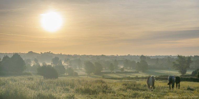 Retour de brume dans la vallée