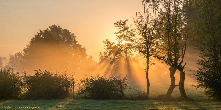 La brume rayonne comme une orange