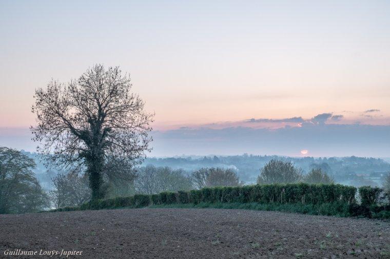 Brumeuse et froide matinée de printemps