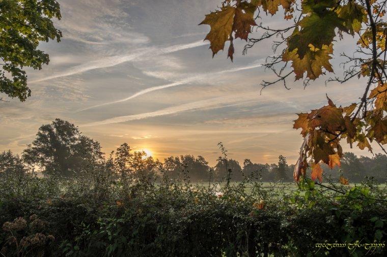 L'automne et les couleurs