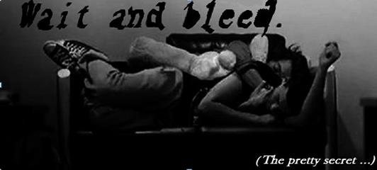 Wait and Bleed, the pretty secret ... : fiction Larcel et Ziall (Prologue + Trailer)