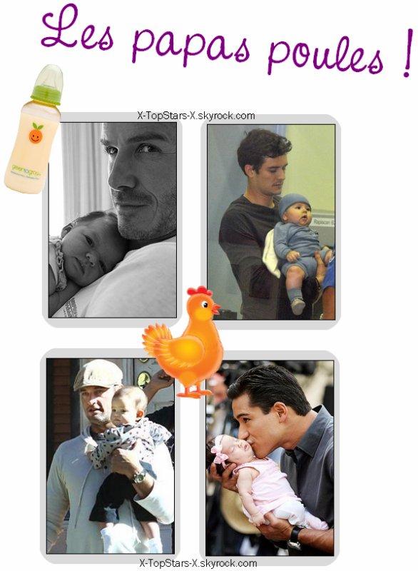 Les papas poules #99