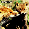 Photo de louval30