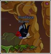 VivePaque =x