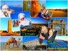 Nbriick-Algeriie