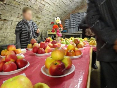 Fête de la pomme au moulin d'Eschviller _ suite 2_ par Béa pour lorraineblog