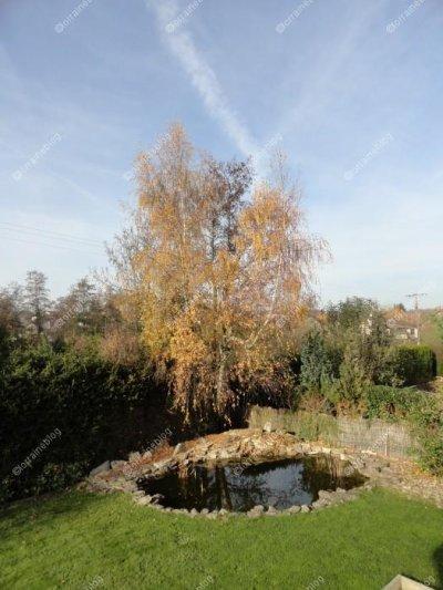 L'automne par Béa pour lorraineblog