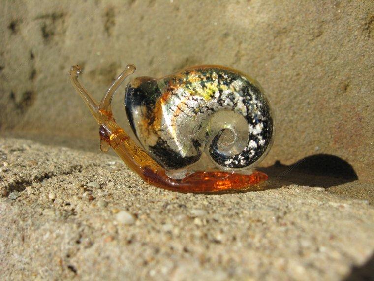 Escargot vu par Béa pour lorraineblog