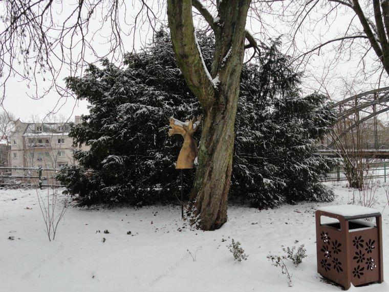 Jardin de Sarreguemines - 2ème partie - par Béa pour lorraineblog