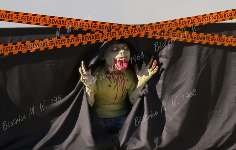 Halloween par Béa pour lorraineblog