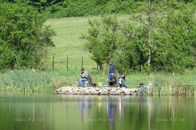 scène de vie _ Pêche et perches _ vue par Béa pour lorraineblog