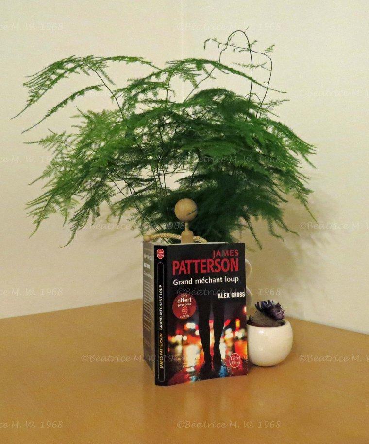 James Patterson lu par Béa pour lorraineblog
