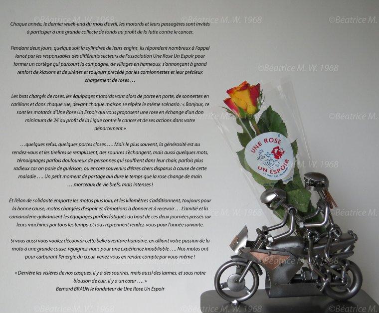 Une rose un espoir vu par Béa pour lorraineblog