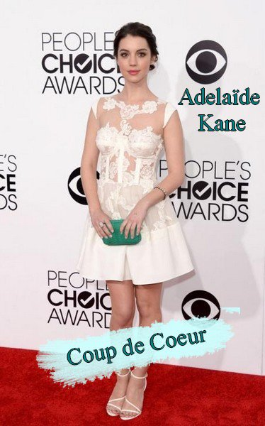 Les Tenues de Stars aux People's Choice Awards 2014