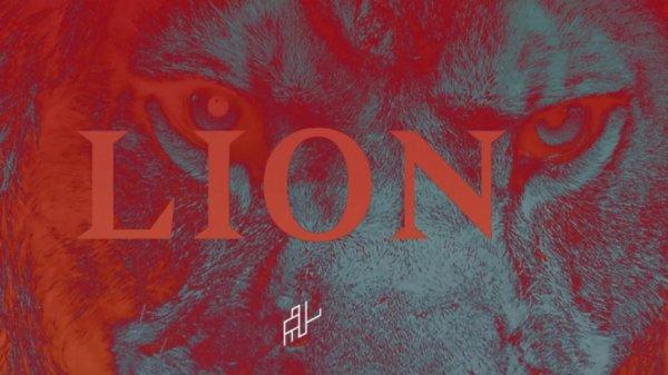 PNL-LION / LION (2016)