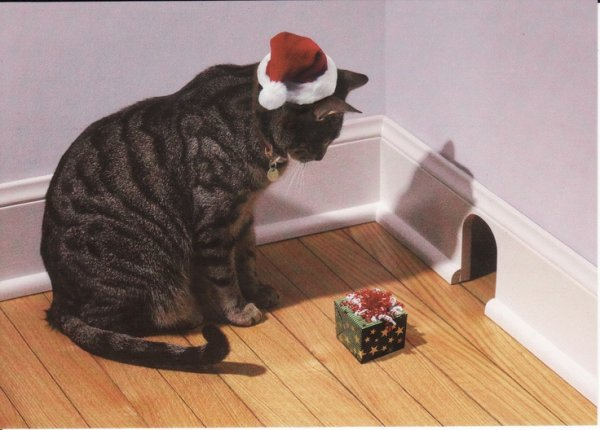 """""""Je fais même un cadeau à la souris de la maison je me sens généreux durant le temps des fêtes"""""""