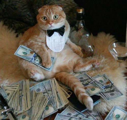 """""""Quoi j'ai juste gagné de l'argent au Casino!"""