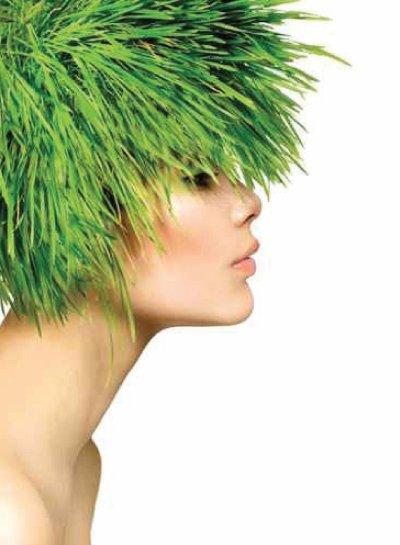 #Beauté et #nature : Renforcer ses #cheveux