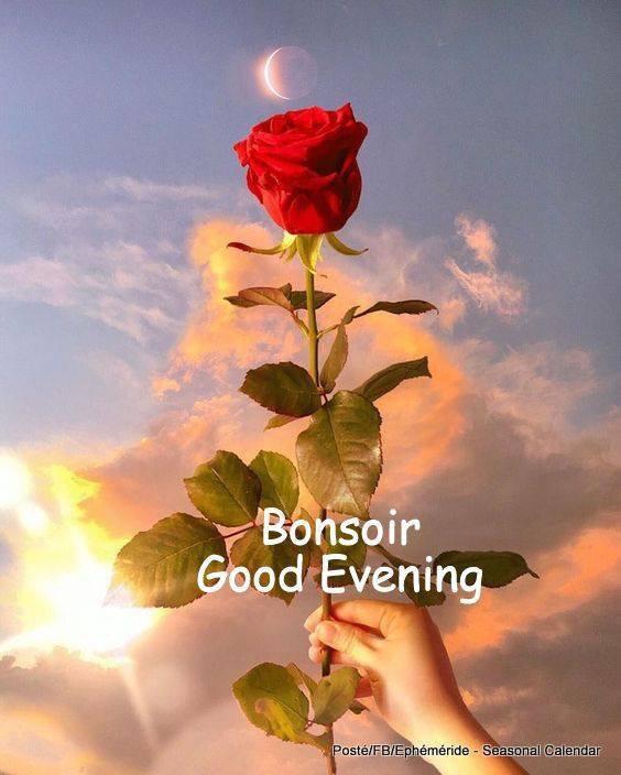 Bonne fin de soirée à vous mes amies