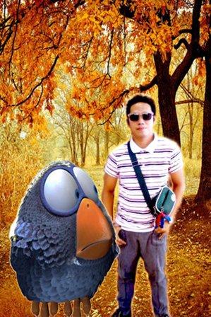 -ANGRY BIRDS d@-,@b \V/,-
