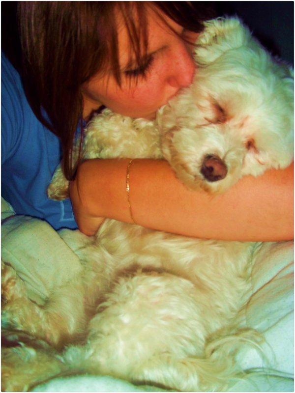 Ça compte même si c'est un chien, Je t'aime...