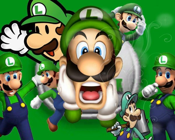 Biographie de Luigi