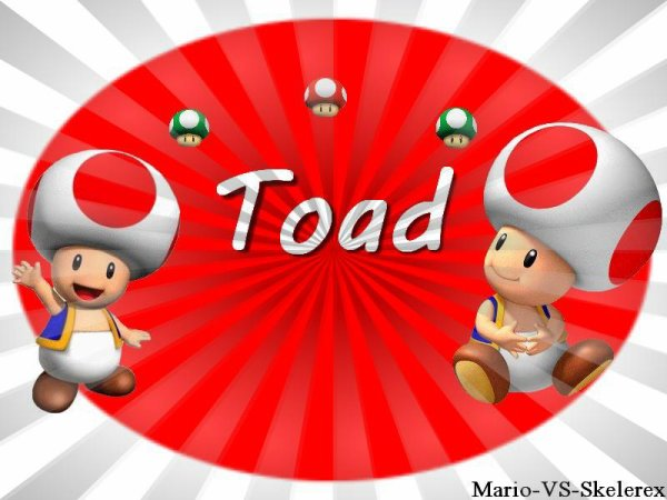 Biographie Toad
