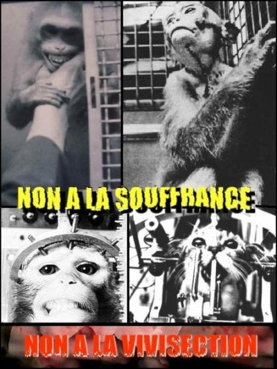 NON A LA VIVISECTION !