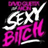 Sexy Bitch - David Guetta  / Sexy Bitch - David Guetta  (2010)