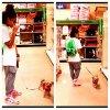 Photo de Princeton avec ( je crois son nouveau petit chien ) au magasin :D