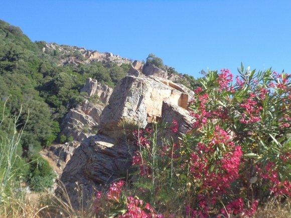 2012, le 7 juillet. Col de Bacinu, Figari, Roccapina, Sartène. Les retrouvailles avec le sud  de la Corse.
