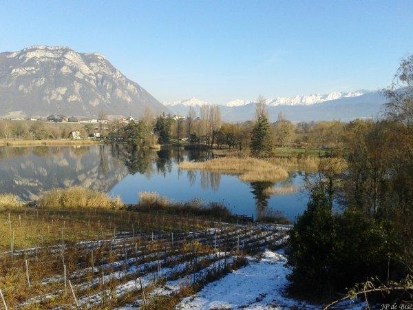 2013, le 4 décembre. Au milieu des vignobles savoyards, le lac Saint André. (2)