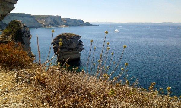 2016, le juillet. Bonifacio, une perle sur une mer d'émeraude.