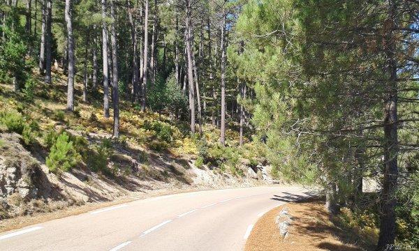 2017, le 6 août. La route magique du col d'Illarata...