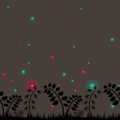 Thème : La nuit des Lucioles
