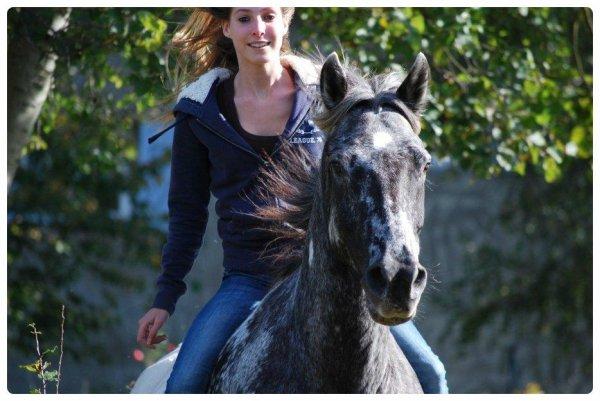 « Faites du cheval un compagnon et non un esclave vous verrez quel ami extraordinaire il est »